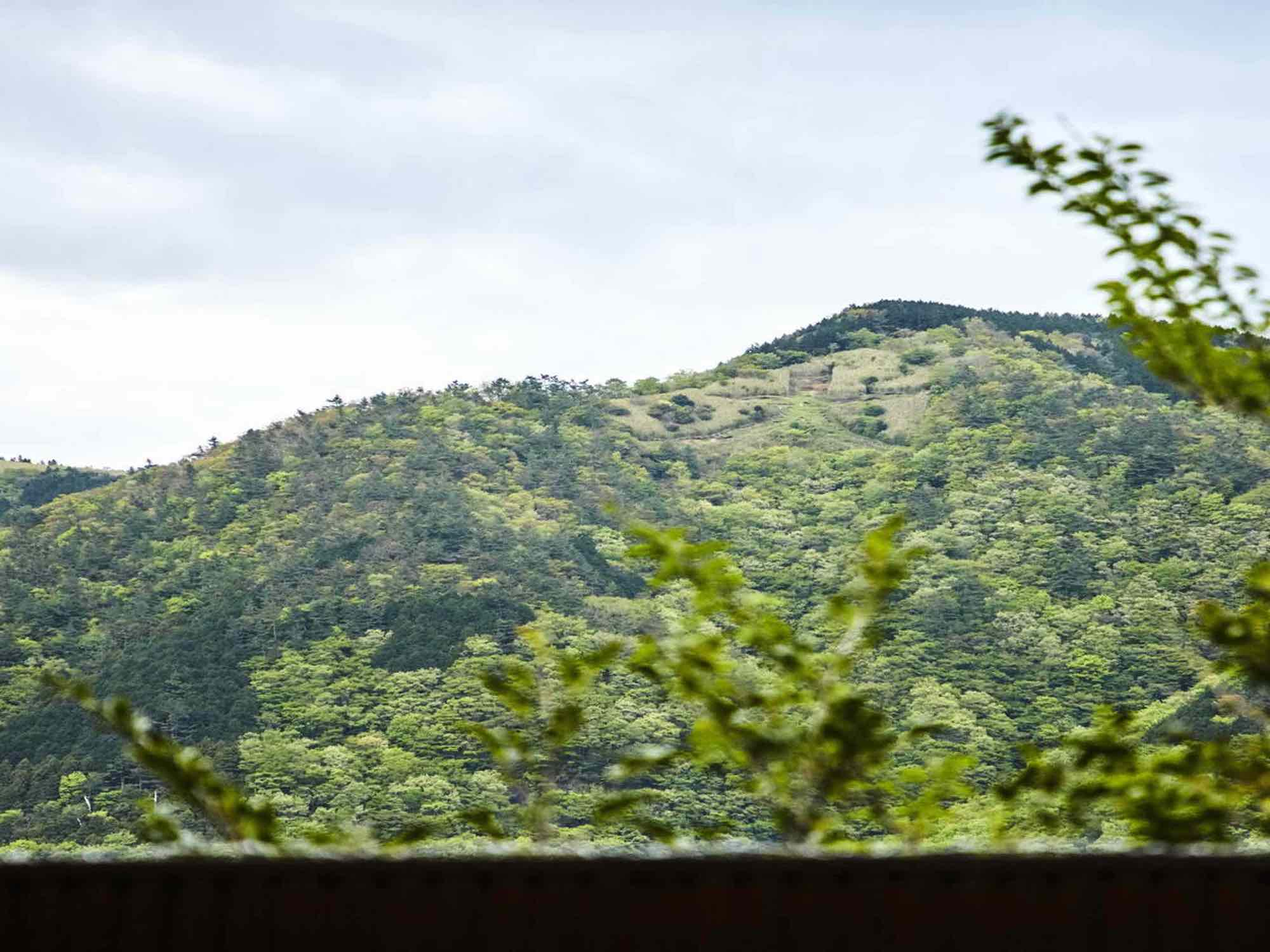 大文字焼きを見晴らす箱根・強羅の一等地