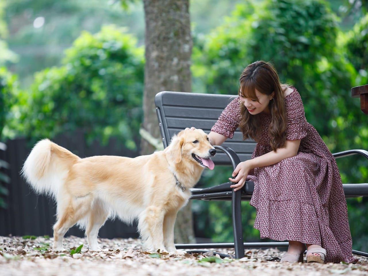 愛犬も大満足の設備&アクティビティ