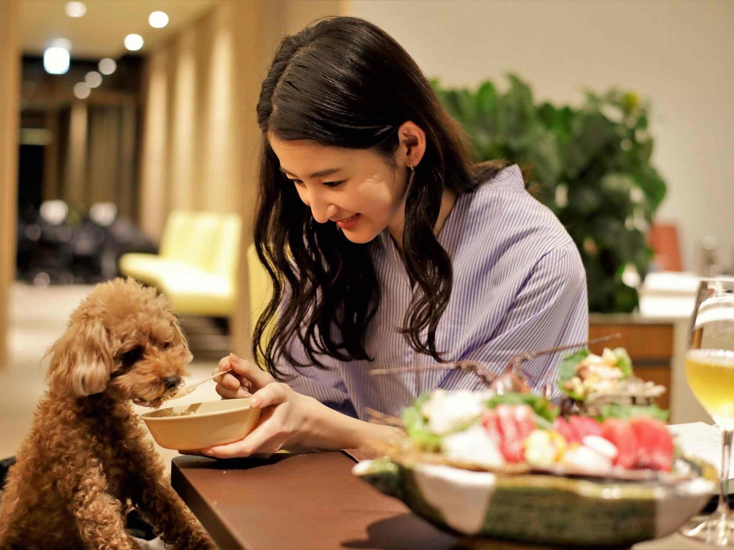 愛犬用のお食事