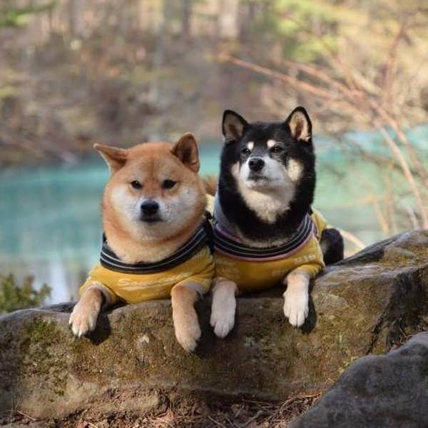 @natsuki_and_keita