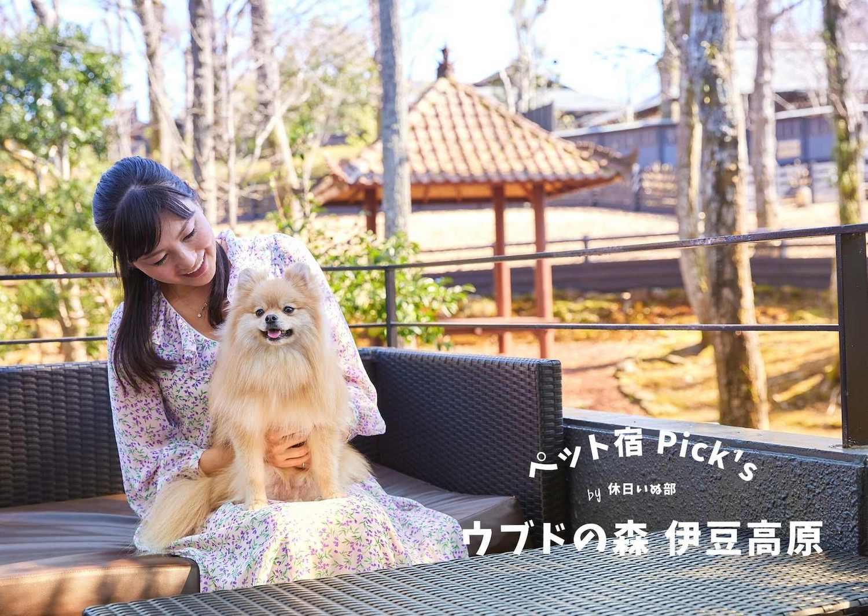 【静岡・伊豆】伊豆高原に佇む異国情緒溢れる愛犬リゾート!「ウブドの森 伊豆高原」で寛ぐ休日