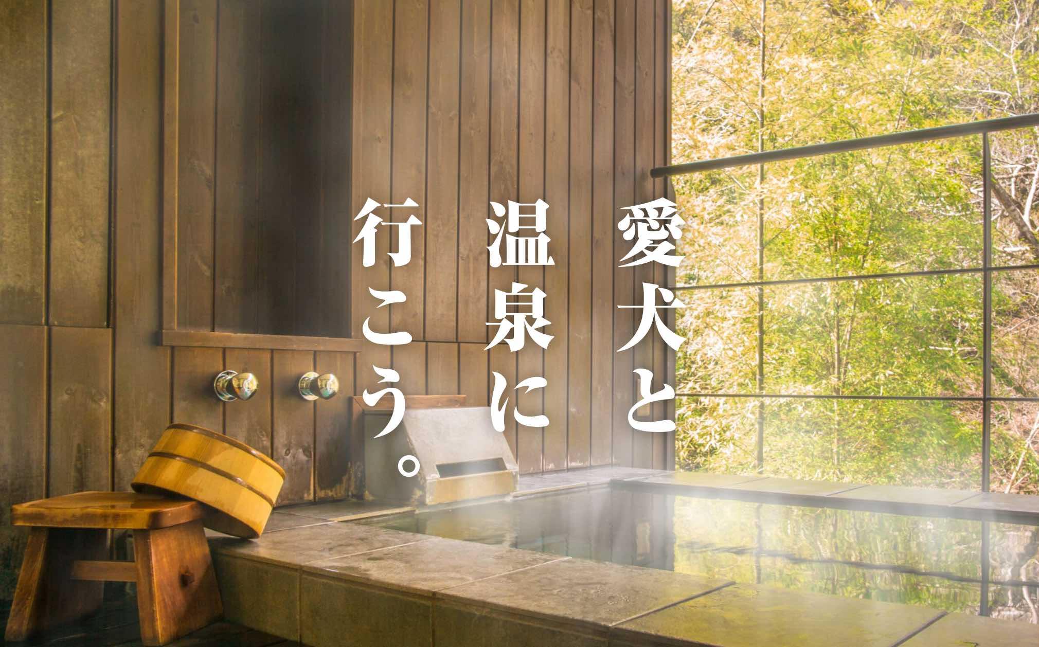 今年の秋・冬は、愛犬と温泉に!<br /> ペットと泊まれる温泉宿特集