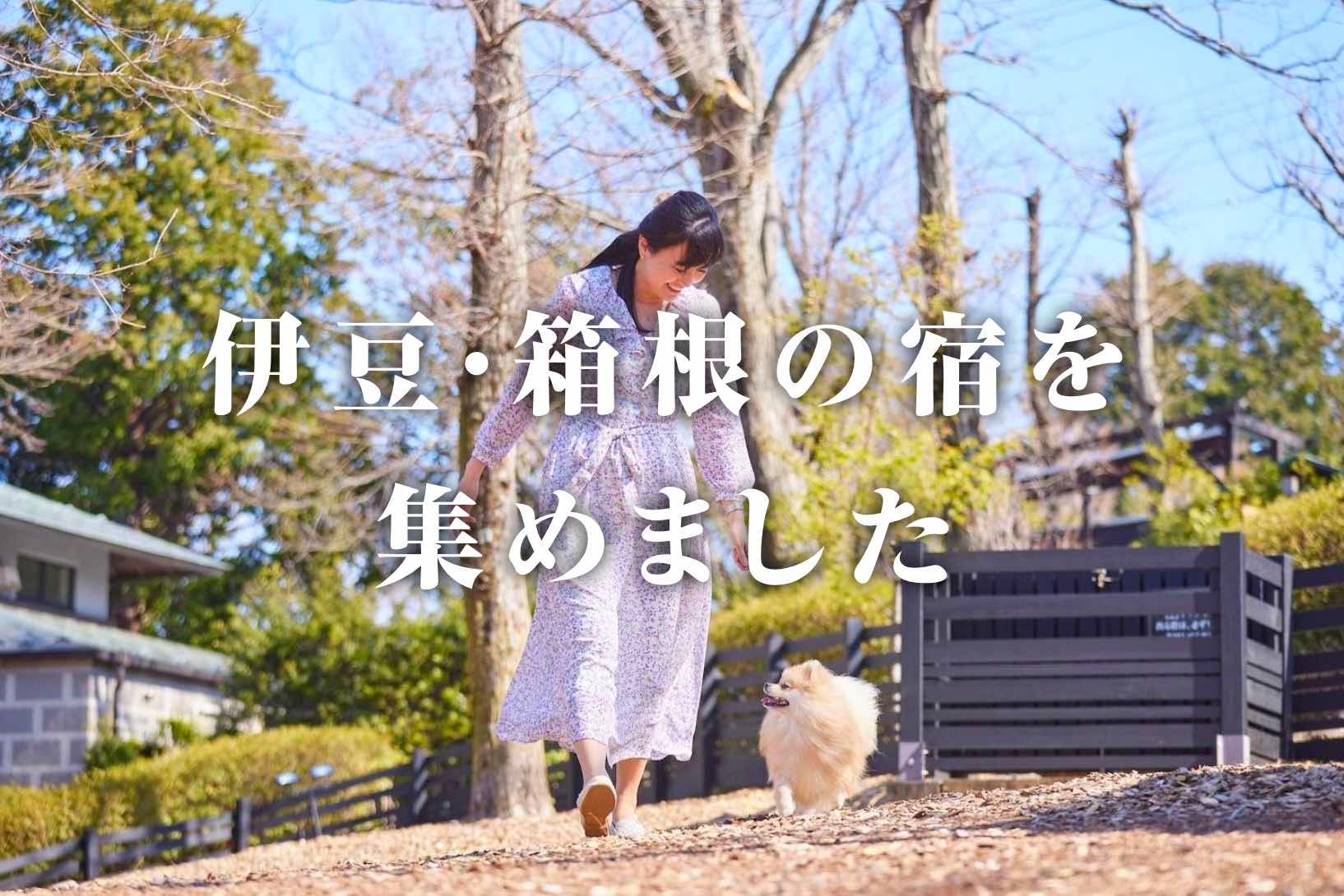 愛犬と伊豆・箱根へ行こう!<br /> ペットと泊まれる宿特集